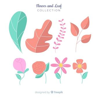 Set de flores y hojas