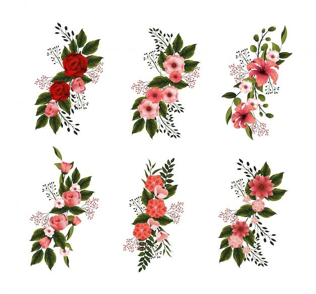 Set flores naturales plantas con pétalos y hojas.