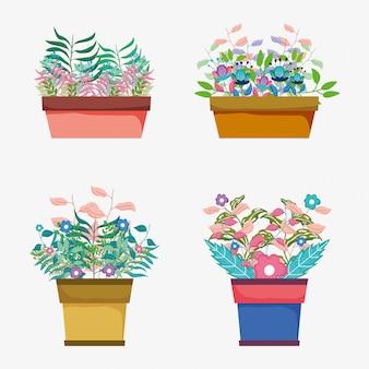 Set flores planta con hojas dentro de maceta.