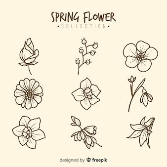 Set de flores de primavera