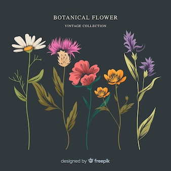 Set de flores retro