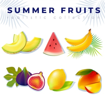 Set de frutas de verano realistas: melón, sandía, plátano, higos, limón, mango.