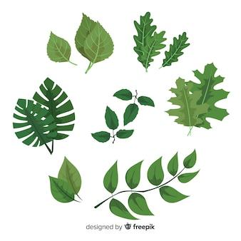 Set de hojas en estilo retro