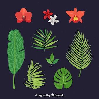 Set de hojas y flores tropicales