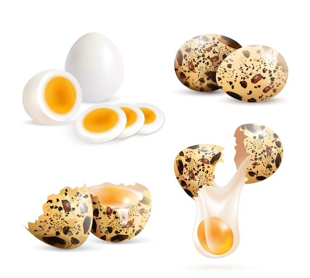 Set de huevos de codorniz realistas