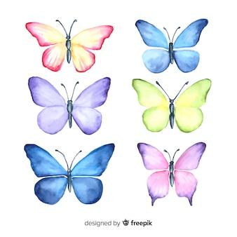 Set mariposas dibujadas a mano