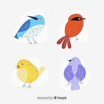Set de pájaros dibujados