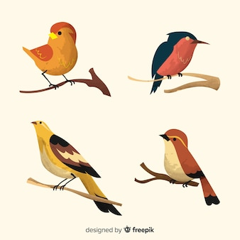 Set de pájaros sobre ramas en acuarela
