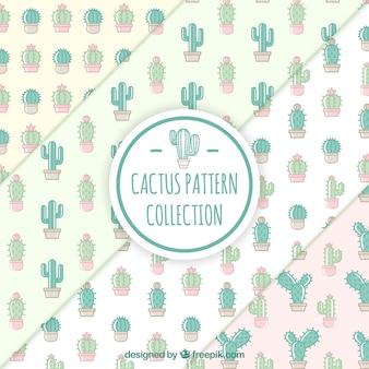 Set de patrones bonitos de cactus