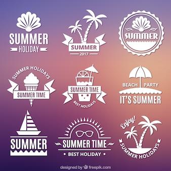 Set de pegatinas de verano en estilo vintage