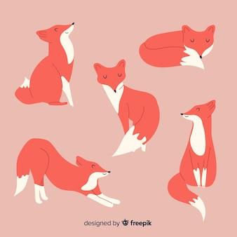 Set de pequeños zorros adorables