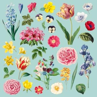 Set de pintura de diferentes flores.