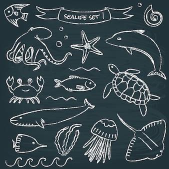 Set de pizarra sealife