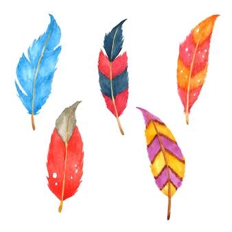 Set de plumas dibujadas a mano pintadas en acuarela.