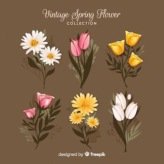 Set retro de flores de primavera