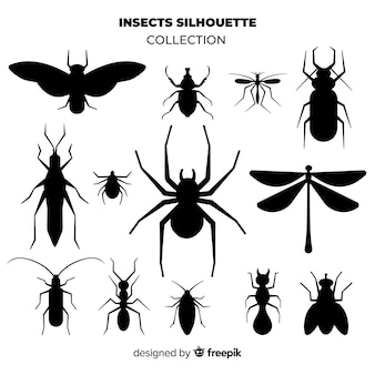 Set de siluetas de insectos