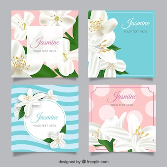 Set de tarjetas de jazmines en estilo realista