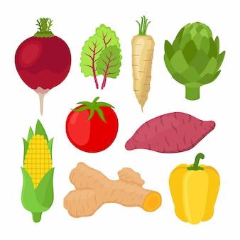 Set de verduras de jardín