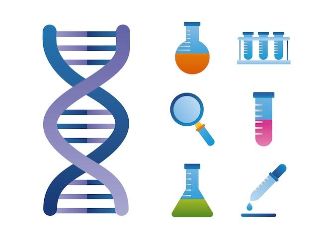 Siete iconos de conjunto genético de adn