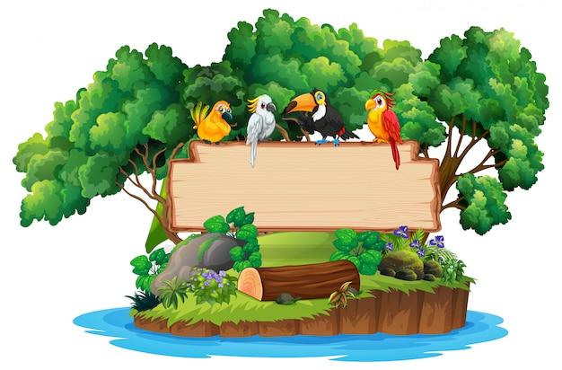 Signo en blanco de madera de selva y aves copyspace