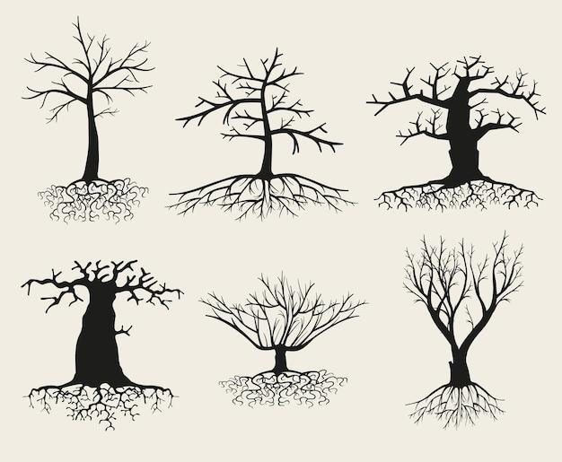 Silueta de árbol desnudo con raíces