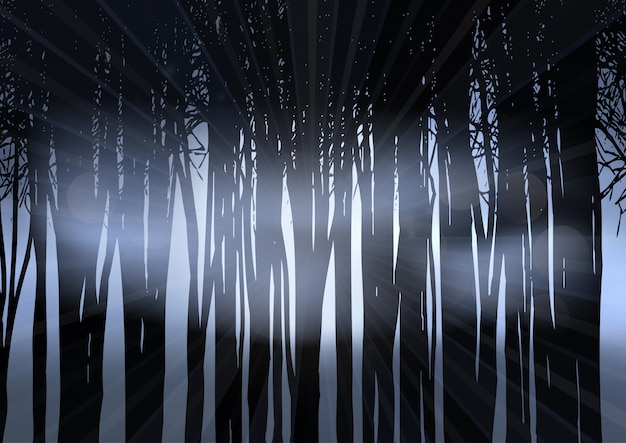 Silueta de un bosque en la noche