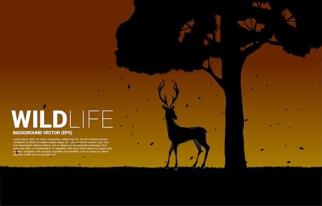 Silueta de ciervo grande con fondo de árbol grande para el cuidado natural y salvar el medio ambiente.