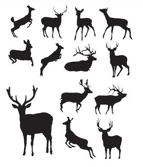 Silueta de ciervo