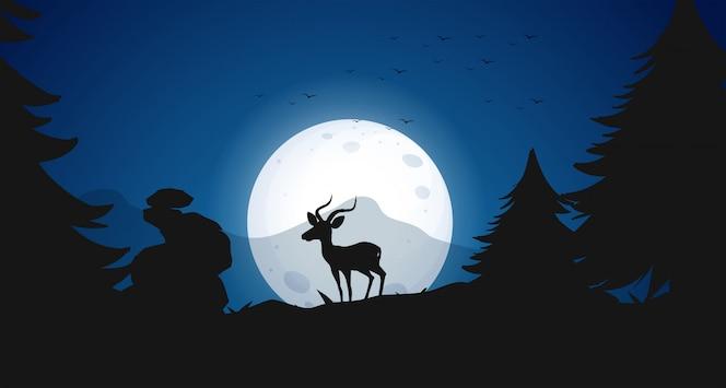 Silueta, ciervos, en, noche, bosque