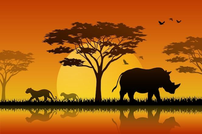 Silueta de animales en puesta de sol en savanah