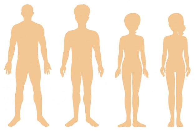 Silueta de diferentes humanos