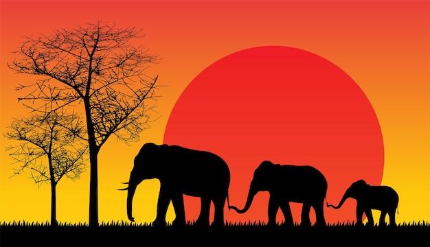 Silueta negra de elefante salvaje naturaleza ilustración vectorial