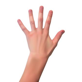 Silueta realista en 3d de una mano abierta sobre blanco