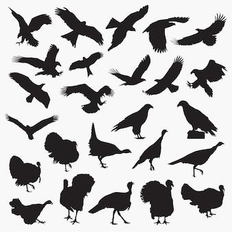 Siluetas de águila pavo
