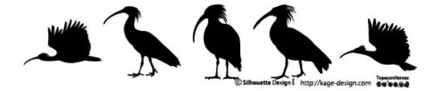 Siluetas de aves 2