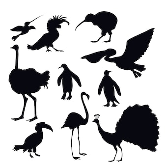 Siluetas de aves exóticas