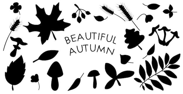 Siluetas de hojas de otoño negras aisladas sobre fondo blanco