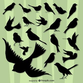 Siluetas de pájaros volando