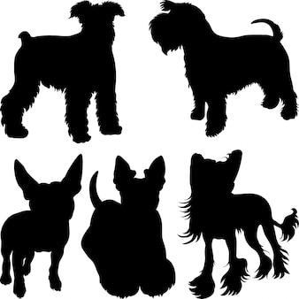 Siluetas de perros terrier en el estante