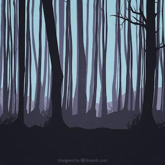 Siluetas de los troncos en el bosque