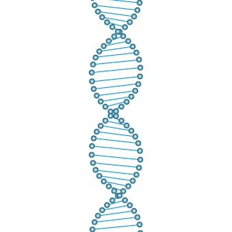 Símbolo de cadena de adn.