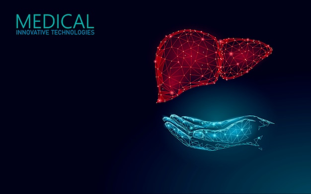 Símbolo en línea médico del hígado concepto en línea. aplicación de consulta médica. web de diagnóstico de salud banner de la red de farmacias. entrega mercado fondo bajo poli