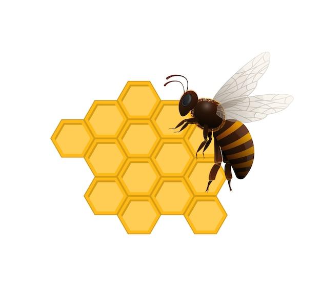 Símbolo natural de delicadeza dulce con abeja