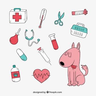 Simpático perro con elementos de veterinaria