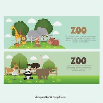 Simpáticos banners de animales salvajes en el zoo