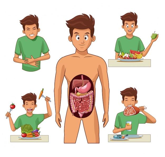 Sistema digestivo y dibujos animados de hombre joven