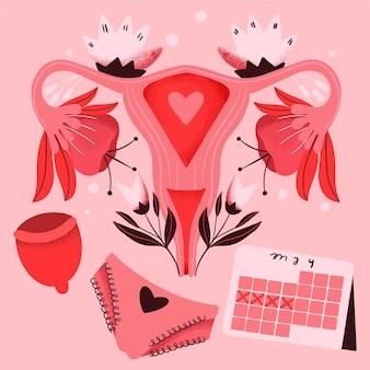 Sistema reproductor femenino con flores.