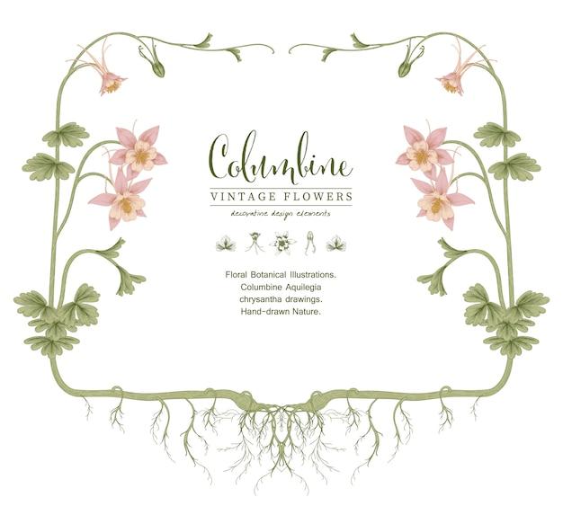 Sketch floral botany collection