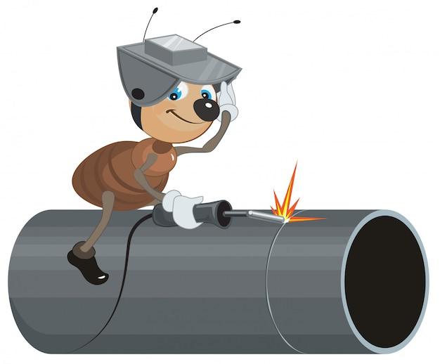 Soldador de hormigas suelda el tubo