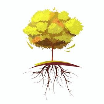 Un solo árbol de otoño